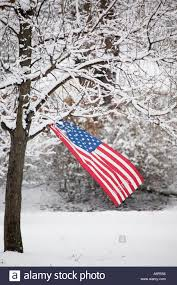 Country American Flag An American Flag Waves In The Breeze From The Snow Covered Branch