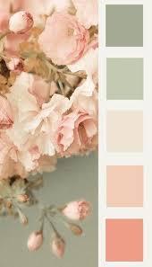 best 25 colour peach ideas on pinterest peach colour