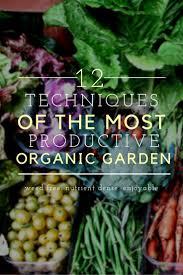 best 25 organic gardening ideas on pinterest gardening