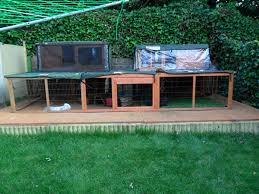 Cool Pets Rabbit Hutch Pet Rabbits How Do You Keep Them Cool In Weather Bunnies