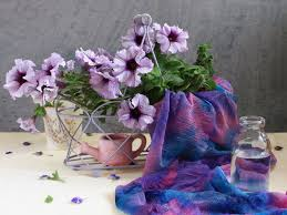 photography lovely life romantic colorful petals glass beautiful
