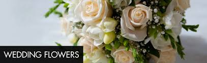 Deliver Flowers Today Sameday Flowers Delivered Wow Flowers Com Deliver Flowers Today