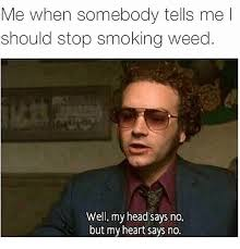 Memes About Smoking Weed - me when somebody tells me l should stop smoking weed well my head
