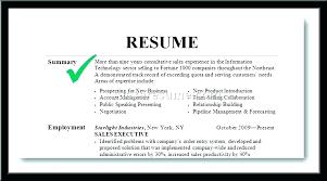 summary resume exles resume exles summary