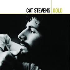 gold photo album cat gold