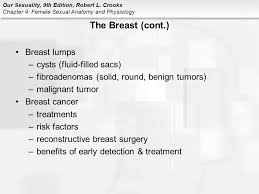 Female Breast Anatomy And Physiology Chapter 4 Female Sexual Anatomy And Physiology Ppt Video Online