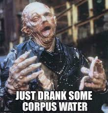 Cc Memes - corpus christi water all the memes you need to see heavy com page 4