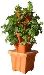 Indoor Container Gardening - ezgro elite hydroponic indoor outdoor container garden