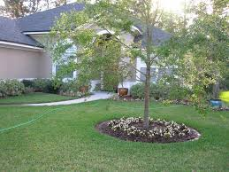 Front Lawn Landscaping Designs by Makeovers And Cool Decoration For Modern Homes Best 20 Front