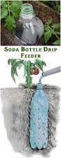 Diy Self Watering Herb Garden Best 25 Self Watering Planter Ideas On Pinterest Self Watering