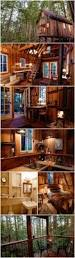 best 25 best tree houses ideas on pinterest awesome tree houses