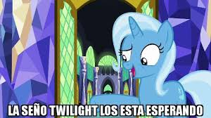 Trixie Meme - trixie meme lol pinterest meme and mlp