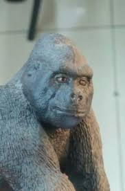 Gorilla Meme - create meme drunk gorilla drunk gorilla gorilla gorilla