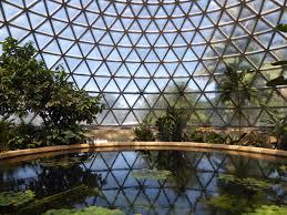 Brisbane Botanic Gardens Mount Coot Tha by 5 Nights In Brisbane My World Of Adventure