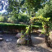Botanic Garden Santa Barbara Santa Barbara Botanic Garden 461 Photos 175 Reviews