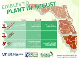 221 best garden food florida images on pinterest fruit plants