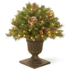 national tree company 2 ft frosted berry porch artificial bush