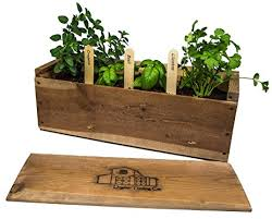 amazon com indoor herb garden planter box kit with basil