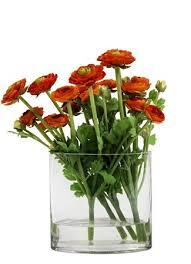 Silk Flower Plants - south africa silk flowers u0026 plants