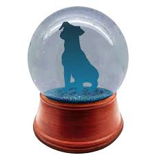 you design to toe personalized pet snow globe