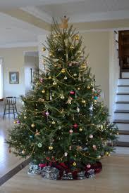 live christmas tree home