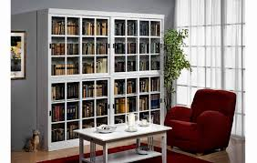 Wall Display Cabinet With Glass Doors Living Room Cool Glass Door Cabinets Living Room Corner Display
