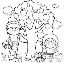 kids harvesting apples coloring book page stock vector art