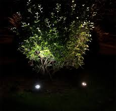Landscape Lighting Ideas Trees Led Landscape Lighting Ideas For Creating An Outdoor Oasis
