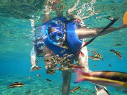 South Dakota snorkeling images Huatulco snorkeling rafting tour amstar excursion JPG