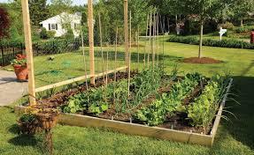 outdoor vegetable garden christmas ideas best image libraries