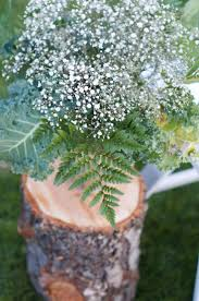 Fern Decor by Best 20 Fern Centerpiece Ideas On Pinterest Different Types Of