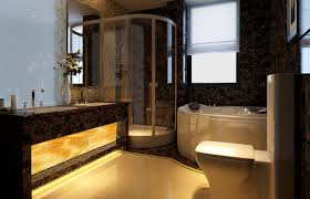 high end bathroom with tub and shower partition 1 high end