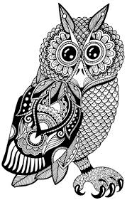 827 best owls black n white images on pinterest drawings