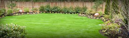 moonlight lawn and landscape lawn care wichita ks