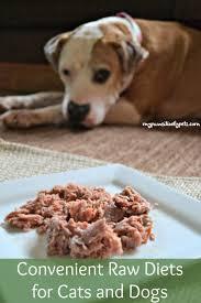 70 best healthy dog foods images on pinterest foods blogging