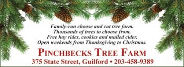 cut your own christmas tree at pinchbeck u0027s tree farm guilford ct
