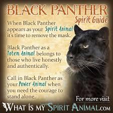 black panther symbolism u0026 meaning spirit totem u0026 power animal