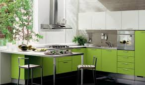 green kitchen design ideas cabinet ideas for light colored kitchen cabinets design awesome