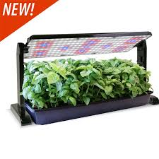 lights to grow herbs indoors shop grow lights for growing herbs flowers and veggies indoors