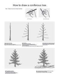 how to draw a conifer u2013 mr cares u0027 art blog