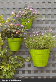 Hanging Wall Planters 144 Best Hanging Wall Planters Images On Pinterest Gardening
