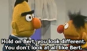 Bert And Ernie Meme - bert and ernie gifs search find make share gfycat gifs