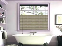 ideas for bathroom window curtains window sill decor ideas plantbasedsolutions co