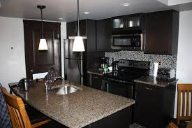 condo kitchen ideas kitchen design ideas and photos for small kitchens condo lively