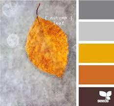 Autumn Color Schemes 83 Best Colour Palette Images On Pinterest Colors Combination