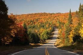 New York State Fall Foliage Map by Weekend Foliage Planner New England Fall Trips New England Today