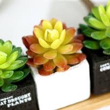 plants for office aliexpress com buy lotus cactus plants artificial succulent