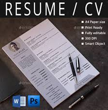Resume Word Template Download 14 Professional Resume Word Template 21 Word Professional Resume