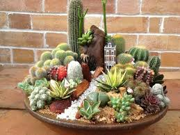 Cactus Garden Ideas If Only I Had Patience To Put This Together And Keep It Alive