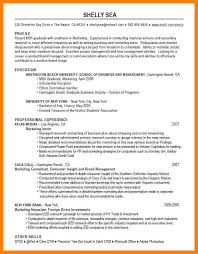 Facilitator Resume Business Owner Resume Professional Fashion Entrepreneur The New